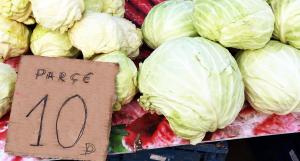 マケドニア野菜安い-キャベツ
